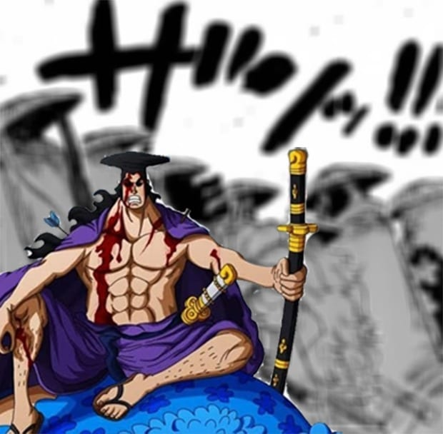 Who are the nine shadows in one piece?