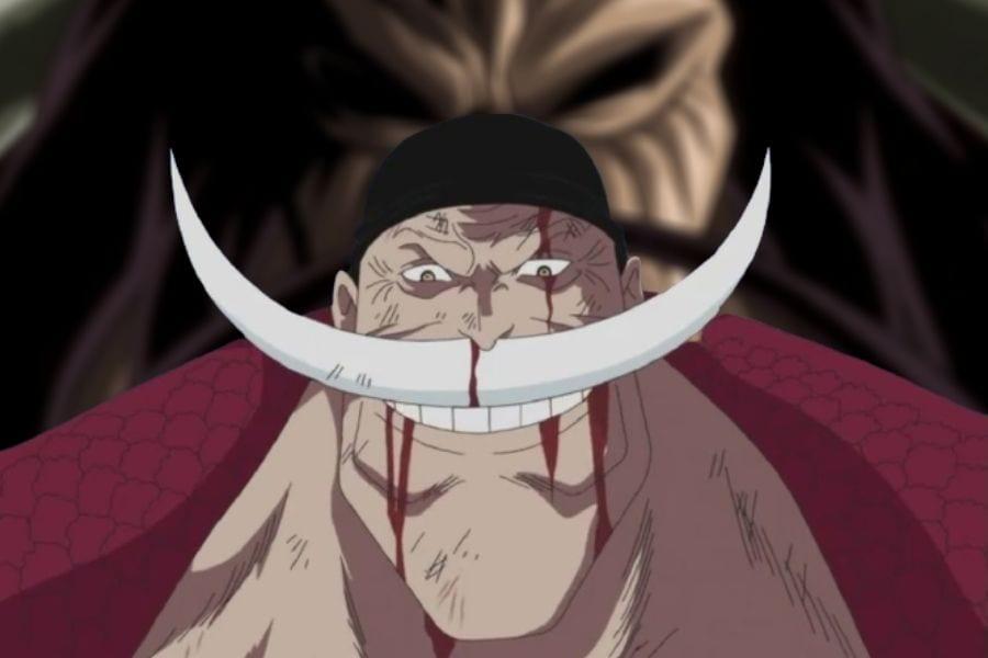 One Piece Reveals Why Whitebeard Didn't Go To Wano
