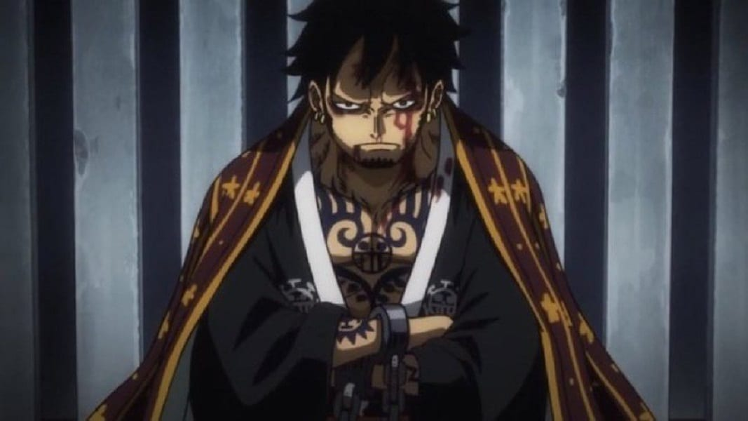 One Piece: Will Law Die In Wano?