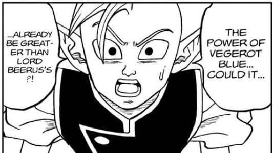 Shin says Vegito may be stronger than Beerus