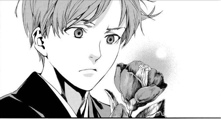 Importance of Camellia in Noragami