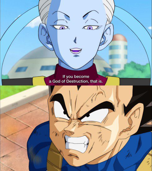 Will Vegeta become a god of destruction? - Vegeta hesitates when Whis asks him